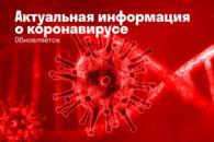 На Камчатке заработали две интернет-площадки с актуальной информацией о коронавирусе в регионе