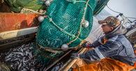 Андрей ЗДЕТОВЕТСКИЙ: необходимо исключить малейшие шансы заболевания COVID-19 на бортах рыбодобывающих и транспортных судов